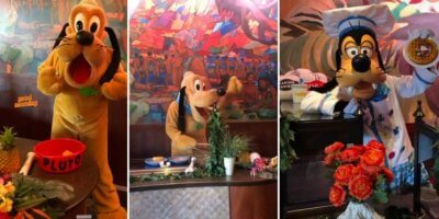 Pluto and Goofy in Aulani, A Disney Resort and Spa