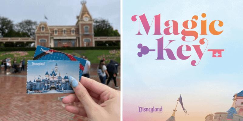 Disneyland Ticket/Magic Key