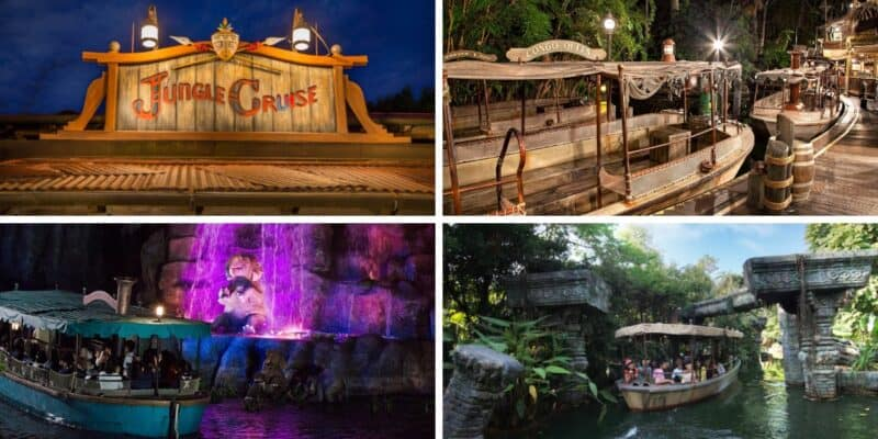 Jungle Cruise Attractions