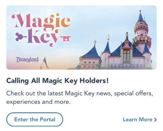 Magic Key Portal