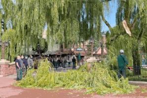 large branch disneyland paris