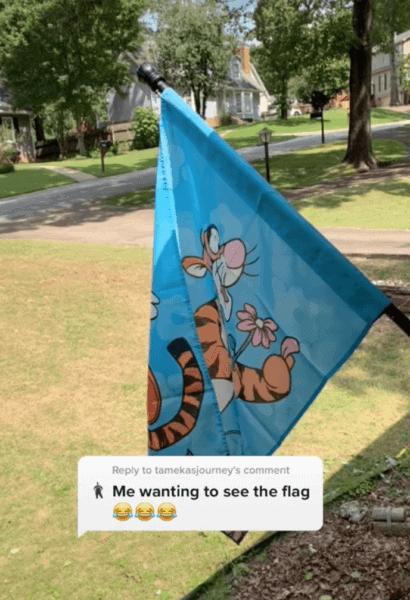 Tigger Flag on TikTok