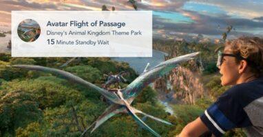 flight of passage wait time