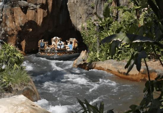 kali river rapids disney world