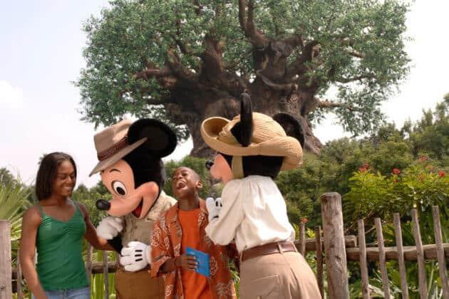 mickey and minnie animal kingdom