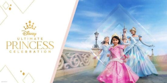 Disney Princess Celebration