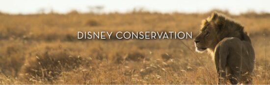Disney Conservation