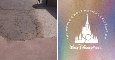 disney pavement 50th