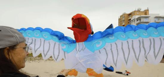 kitetails zazu balloon