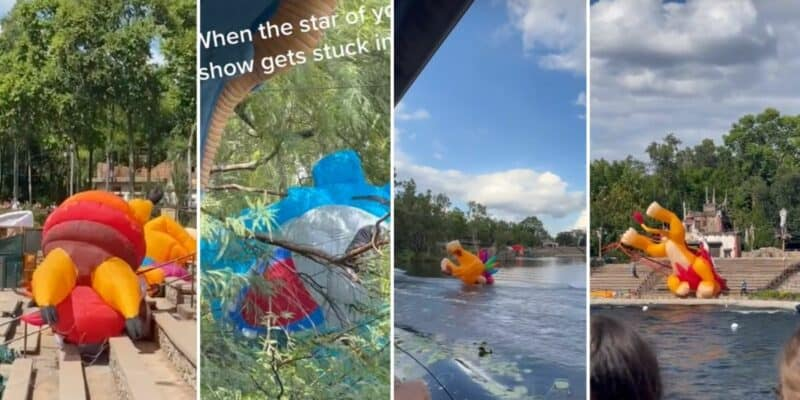 Various scenes of kites crash landing in Disney KiteTails