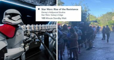 rise of the resistance crowds