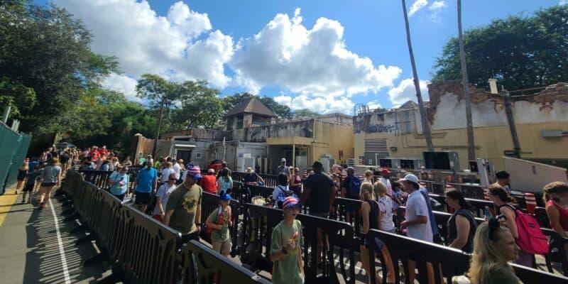 disney backstage safaris